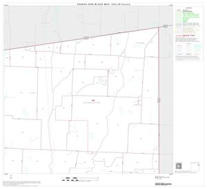 Primary view of object titled '2000 Census County Block Map: Collin County, Block 13'.