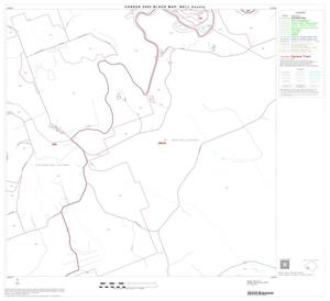 Primary view of object titled '2000 Census County Block Map: Bell County, Block 31'.