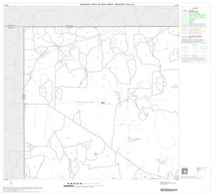 Primary view of object titled '2000 Census County Block Map: Mason County, Block 1'.