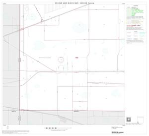 Primary view of object titled '2000 Census County Block Map: Carson County, Block 13'.