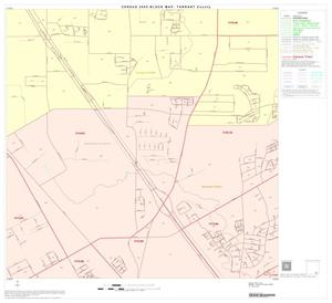 Primary view of object titled '2000 Census County Block Map: Tarrant County, Block 88'.
