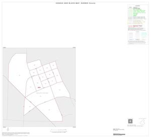 Primary view of object titled '2000 Census County Block Map: Karnes County, Inset B01'.