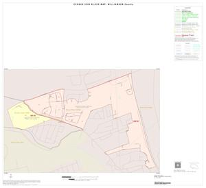 Primary view of object titled '2000 Census County Block Map: Williamson County, Inset J01'.