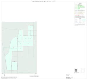 Primary view of object titled '2000 Census County Block Map: Taylor County, Inset F01'.