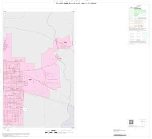Primary view of object titled '2000 Census County Block Map: Waller County, Inset A02'.