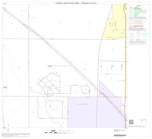 Primary view of object titled '2000 Census County Block Map: Tarrant County, Block 14'.