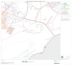 Primary view of object titled '2000 Census County Block Map: Orange County, Block 22'.