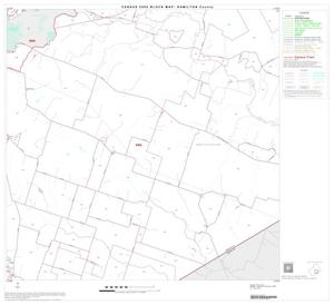 Primary view of object titled '2000 Census County Block Map: Hamilton County, Block 10'.