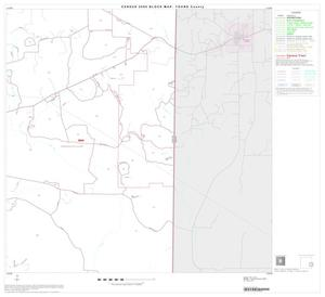 Primary view of object titled '2000 Census County Block Map: Young County, Block 12'.