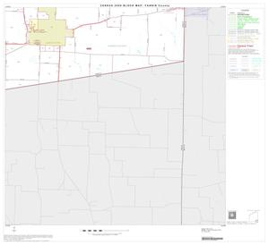 Primary view of object titled '2000 Census County Block Map: Fannin County, Block 19'.