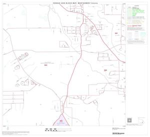 Primary view of object titled '2000 Census County Block Map: Montgomery County, Block 36'.