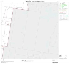 Primary view of object titled '2000 Census County Block Map: Hidalgo County, Block 34'.