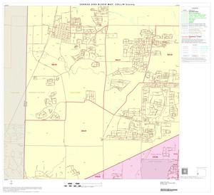 Primary view of object titled '2000 Census County Block Map: Collin County, Block 28'.