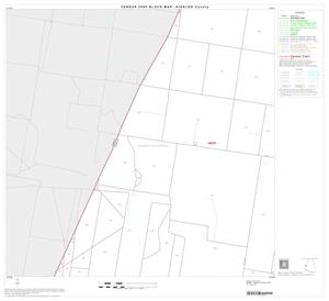 Primary view of object titled '2000 Census County Block Map: Hidalgo County, Block 35'.