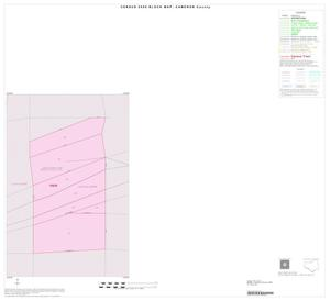 Primary view of object titled '2000 Census County Block Map: Cameron County, Inset D01'.