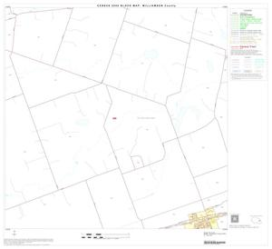 Primary view of object titled '2000 Census County Block Map: Williamson County, Block 45'.