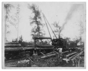 Primary view of object titled 'Early Timber Cutting'.