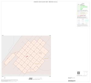 Primary view of object titled '2000 Census County Block Map: Medina County, Inset G01'.