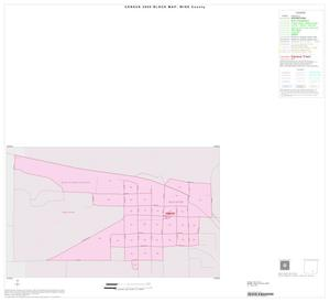 Primary view of object titled '2000 Census County Block Map: Wise County, Inset H01'.