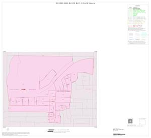 Primary view of object titled '2000 Census County Block Map: Collin County, Inset G01'.