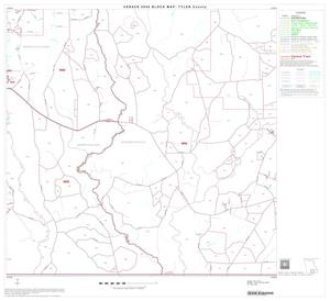 Primary view of object titled '2000 Census County Block Map: Tyler County, Block 14'.