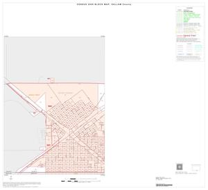 Primary view of object titled '2000 Census County Block Map: Dallam County, Inset B01'.