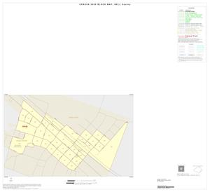 Primary view of object titled '2000 Census County Block Map: Bell County, Inset G01'.
