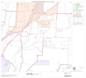 Primary view of object titled '2000 Census County Block Map: Collin County, Block 17'.