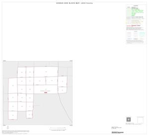 Primary view of object titled '2000 Census County Block Map: Jack County, Inset C01'.
