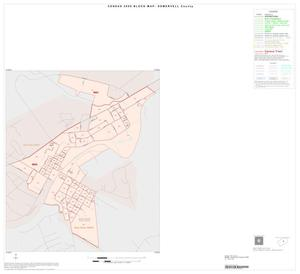 Primary view of object titled '2000 Census County Block Map: Somervell County, Inset A01'.