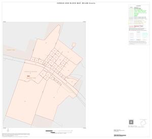 Primary view of object titled '2000 Census County Block Map: Milam County, Inset A01'.