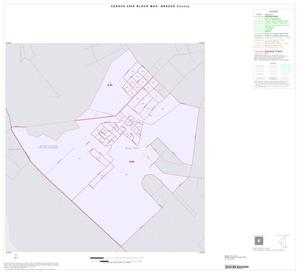 Primary view of object titled '2000 Census County Block Map: Brazos County, Inset C01'.