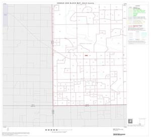 Primary view of object titled '2000 Census County Block Map: Hale County, Block 13'.