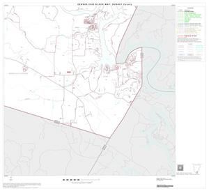 Primary view of object titled '2000 Census County Block Map: Burnet County, Block 20'.