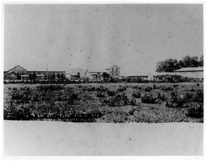 Primary view of object titled '[Kishi Rice Farm's Headquarters]'.