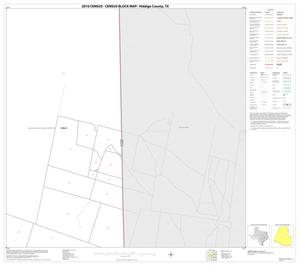 Primary view of object titled '2010 Census County Block Map: Hidalgo County, Block 20'.