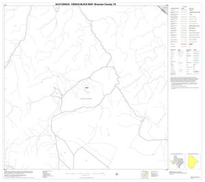 Primary view of object titled '2010 Census County Block Map: Brewster County, Block 13'.