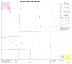 Primary view of object titled '2010 Census County Block Map: Collin County, Block 69'.
