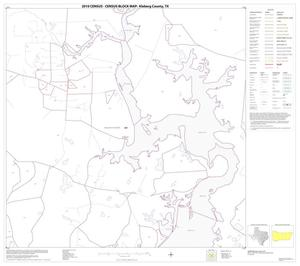 Primary view of object titled '2010 Census County Block Map: Kleberg County, Block 10'.