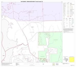 Primary view of object titled '2010 Census County Block Map: Tarrant County, Block 10'.
