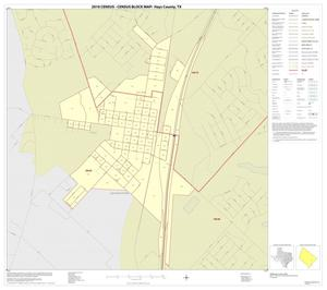 Primary view of object titled '2010 Census County Block Map: Hays County, Inset E01'.