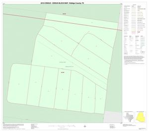 Primary view of object titled '2010 Census County Block Map: Hidalgo County, Inset A01'.
