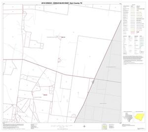 Primary view of object titled '2010 Census County Block Map: Starr County, Block 19'.