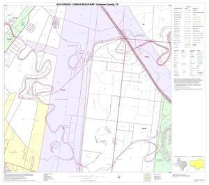 Primary view of object titled '2010 Census County Block Map: Cameron County, Block 43'.