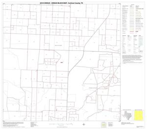 Primary view of object titled '2010 Census County Block Map: Cochran County, Block 5'.