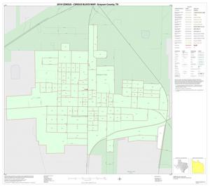 Primary view of object titled '2010 Census County Block Map: Grayson County, Inset I01'.