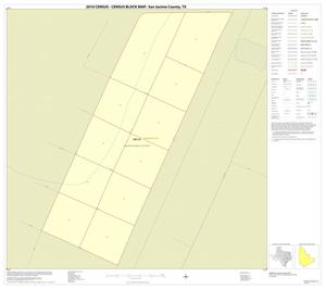 Primary view of object titled '2010 Census County Block Map: San Jacinto County, Inset E01'.