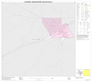 Primary view of object titled '2010 Census County Block Map: Lipscomb County, Inset E01'.