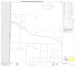 Primary view of 2010 Census County Block Map: Dallam County, Block 13