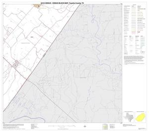 Primary view of object titled '2010 Census County Block Map: Fayette County, Block 13'.